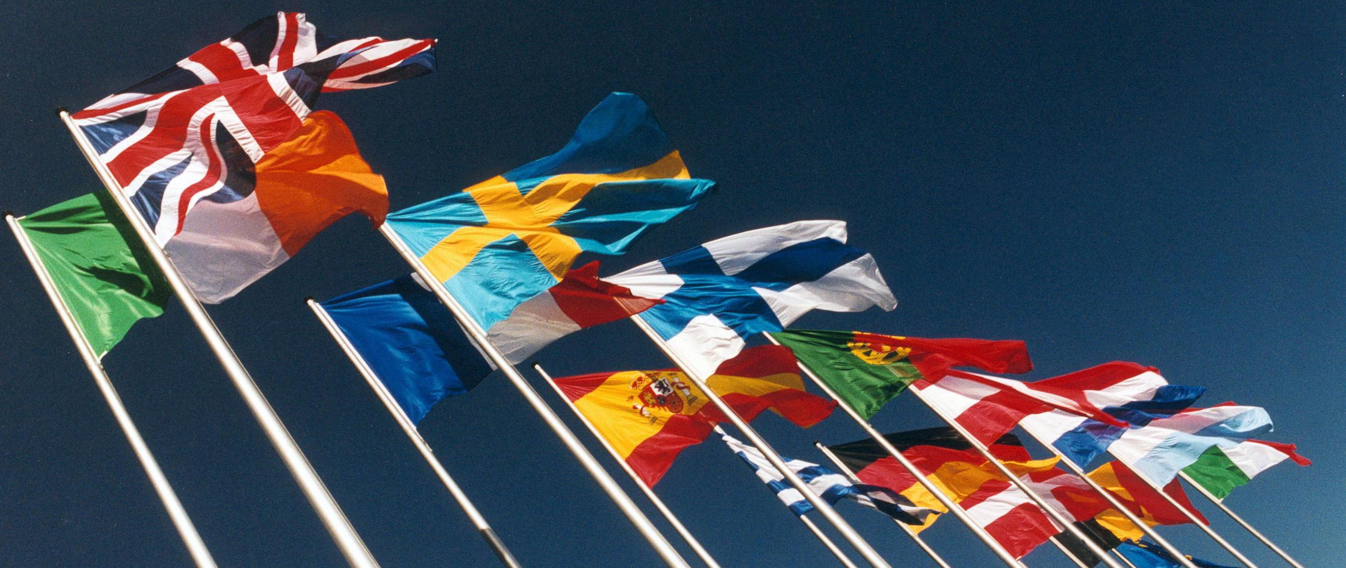 Non Avremo In Inglese Bandiere Europee Bella R